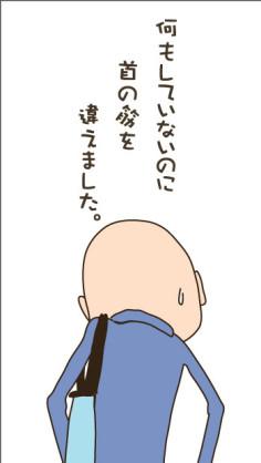 puffer-11